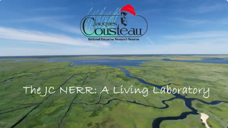 Jacques Cousteau National Estuarine Research Reserve: A Living Laboratory
